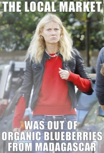 gallery_main-gwyneth-paltrow-meme-01