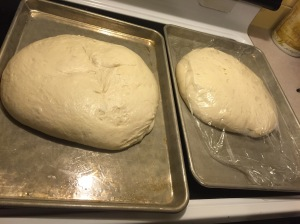 After second rise. See what I mean about them getting HUGE?! The one on the left was bigger than my head after baking...